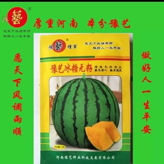 河南省鄭州市中原區西瓜種子 豫藝無籽麒麟(禮品西瓜)黃瓤 高產  甜度特高