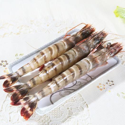 江蘇省鹽城市亭湖區 大號竹節蝦新鮮大蝦黑虎蝦新鮮海蝦海鮮水產鮮活鮮活冷凍草蝦生