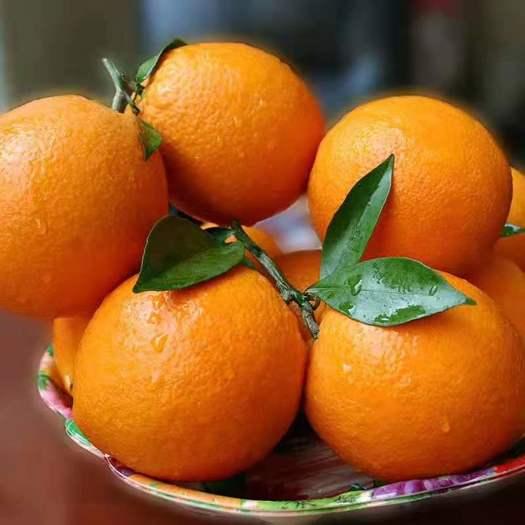 江西省贛州市會昌縣 橙子,臍橙個大,皮薄,水份多,歡迎新老顧客前來選購