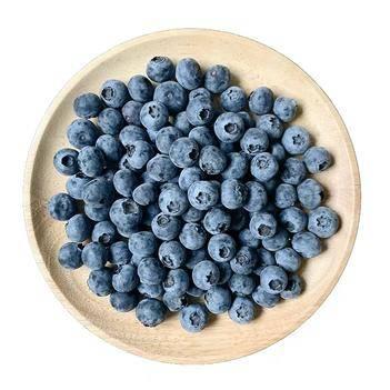 澳大利亚蓝莓,女人必吃,12盒装