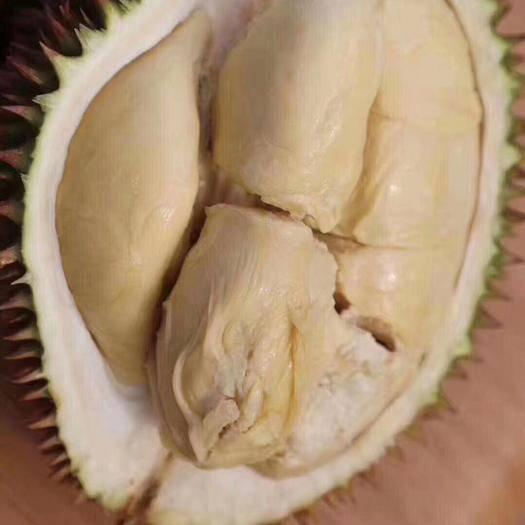 遼寧省沈陽市渾南區冰凍鮮榴蓮 選購放心榴蓮,請來這,因為它有毒,它是蘇丹王,吃后會榴蓮往返