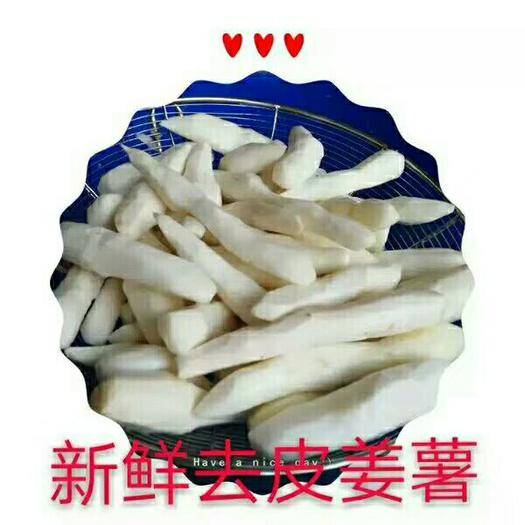 广东省汕头市潮阳区 姜薯