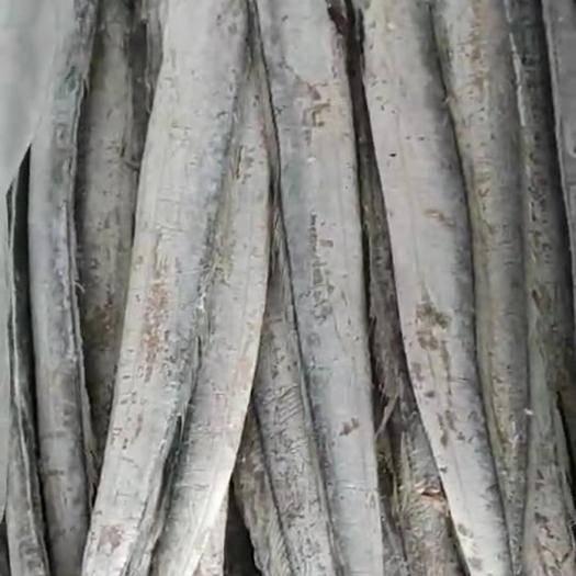 山東省濟南市歷下區 7-9海捕舟山帶魚干凈 凈重17斤一箱