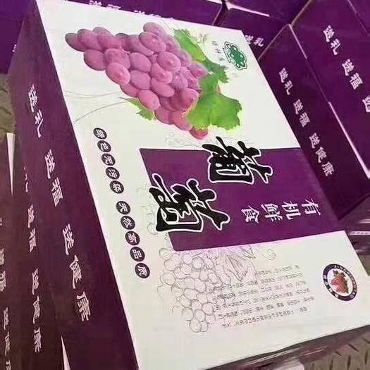 河北省石家庄市晋州市 巨峰葡萄礼盒装  头茬  二茬 大量供应