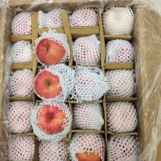 內蒙古自治區呼倫貝爾市滿洲里市世界一號 新鮮水果批發