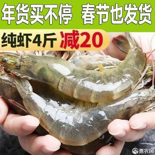山東省青島市即墨區 【春節發貨】凈重3.6-4斤鮮活海捕船凍海蝦對蝦基圍蝦