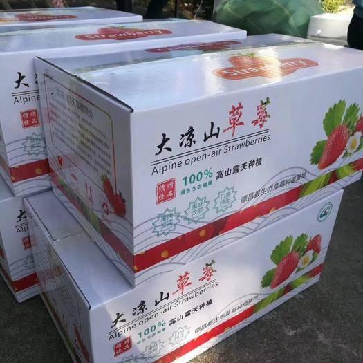 四川省凉山彝族自治州德昌县 大凉山冬草莓
