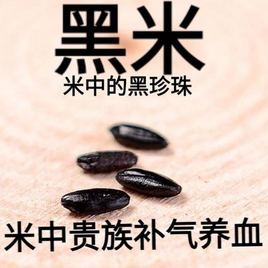 河北省唐山市迁安市东北黑米 东北黑香米大米中的贵族补养气血大米中的黑珍珠5斤装包邮