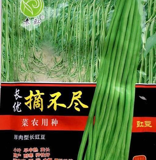 河南省郑州市二七区 长豆角种子新种子散称袋装大量现货出售