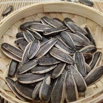 東北大瓜子 五種口味 粒大飽滿香酥可口 批發零售/包郵