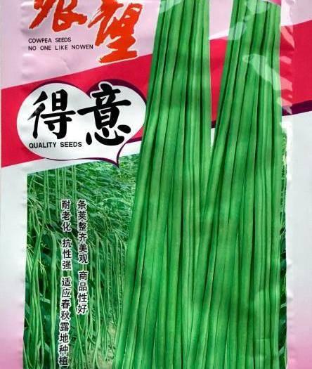四川省南充市嘉陵区 多种豆角种子新种包邮大量现货供应