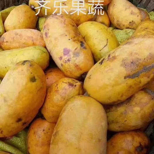 江西省上饒市鄱陽縣九月瓜 九月黃苗五葉木通種苗種植開發