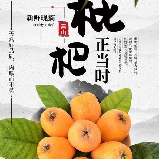 四川省攀枝花市米易县 【精品】米易枇杷 支持一件代发