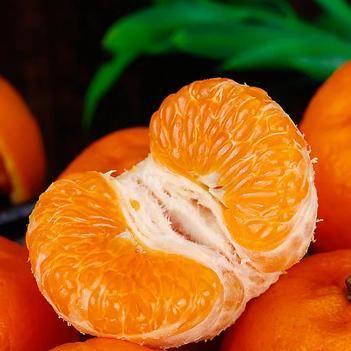 """湘西泸溪椪柑素有""""桔中之王""""之美称,易剥,色鲜、香甜可口。"""