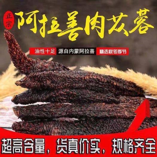内蒙古自治区阿拉善盟阿拉善左旗 【阿拉善直发】10年生肉苁蓉切片油苁蓉切片包邮