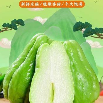 新鲜佛手瓜10斤整箱洋瓜捧瓜丰收窝瓜寿瓜蔬菜类 新鲜蔬菜包邮