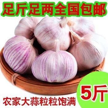干蒜大蒜頭紫皮大蒜5斤包郵大蒜頭山東紅白皮大蒜
