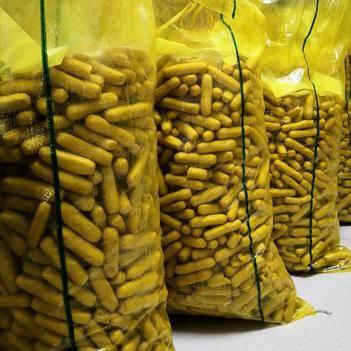 高山生态黄豆 皖南农家手工特产,豆腐条,干度98%以上,易保存。