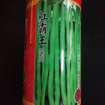 红玉泰国架豆王红霸王500克架豆