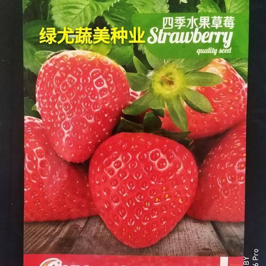 福建省漳州市南靖縣草莓種子 全新四季,確保發芽率,均為簡易包裝。
