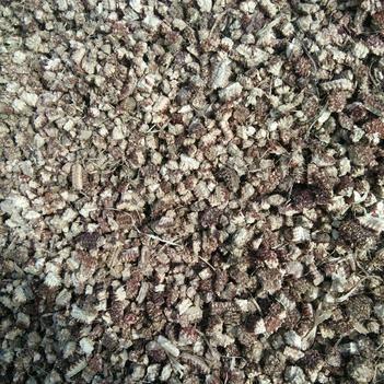 玉米芯 大顆粒,種菇專用,無沙無土,幫忙找車,掛車裝平再碼兩層袋子