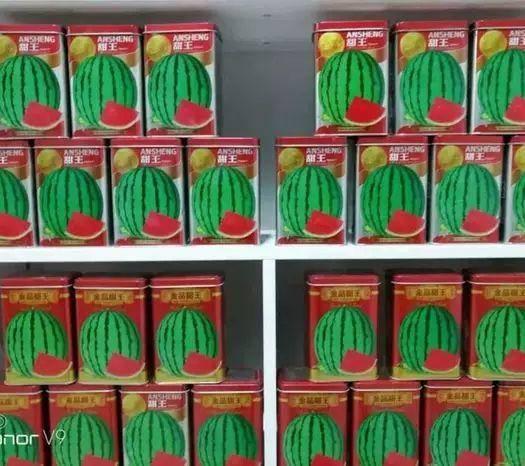 河南省商丘市夏邑縣甜王西瓜種子 安生正品甜王(金品 )廠家直銷 大紅瓤  市場熱銷品種
