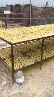 [河南变蛋批发] 河南变蛋,五香变蛋价格0.5元/个