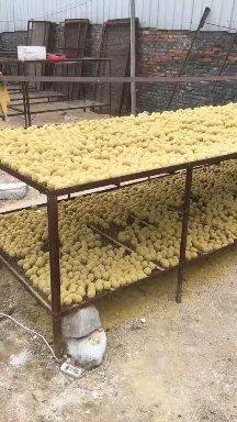 [五香变蛋批发]五香变蛋 河南许昌变蛋价格0.5元/个