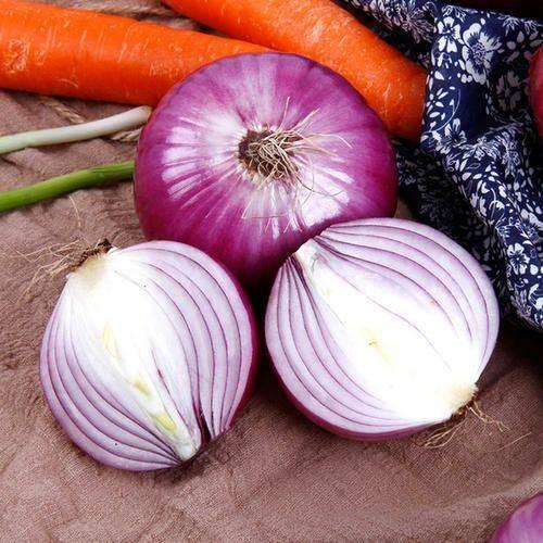 [紫皮洋葱批发] 先挖紫皮洋葱农家自种圆葱新鲜蔬菜电商批发包邮价格28.5元/箱