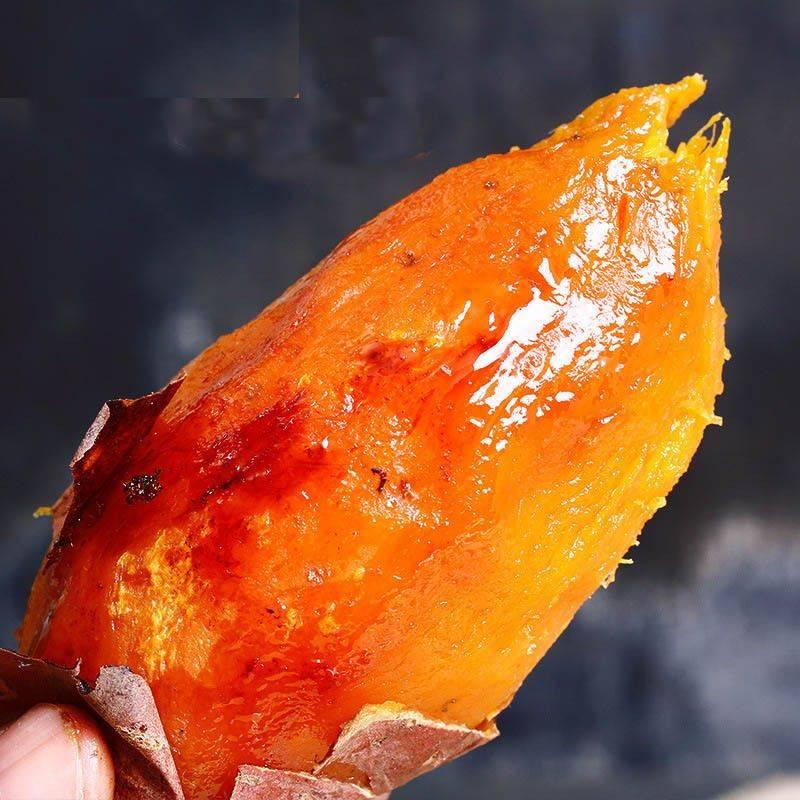 [西瓜红批发] 红薯西瓜红蜜薯湛江西瓜红沙地蜜薯小蜜薯糖心蜜薯 全国包邮价格1.6元/斤
