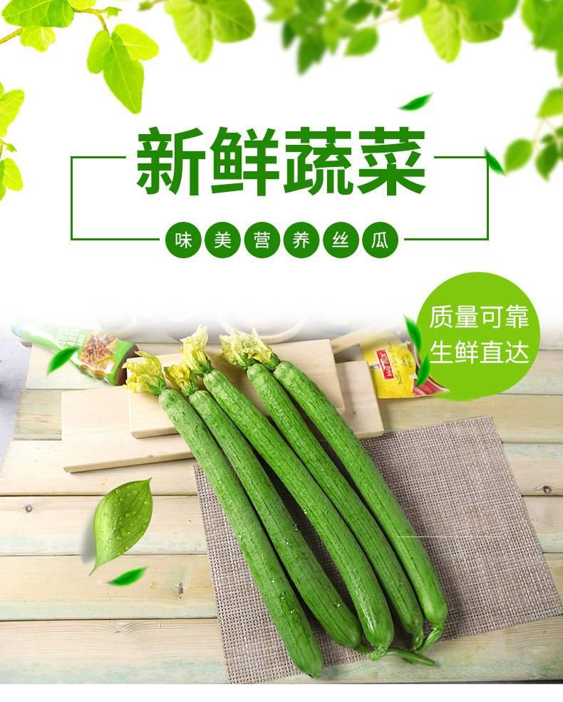 [鲜花丝瓜批发] 丝瓜价格29.8元/箱