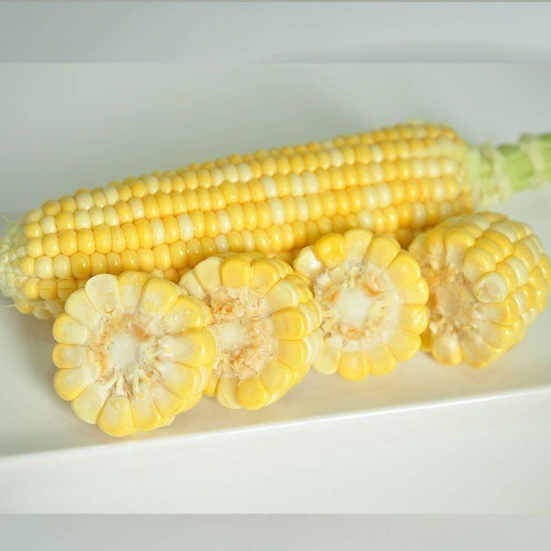 [水果玉米批发] 云南特产水果玉米 甜玉米 新鲜玉米 可生吃玉米金银玉米价格19.8元/箱