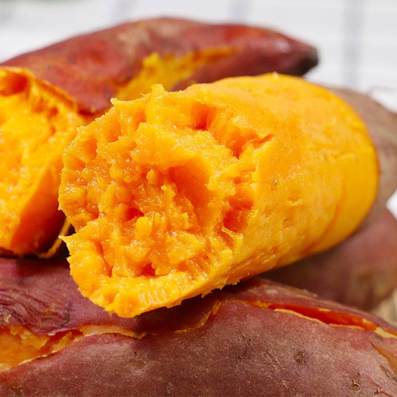 [红薯批发]红薯  【现挖现发】新鲜板栗黄心番薯 香糯软糯 皮薄肉厚价格10.9元/箱