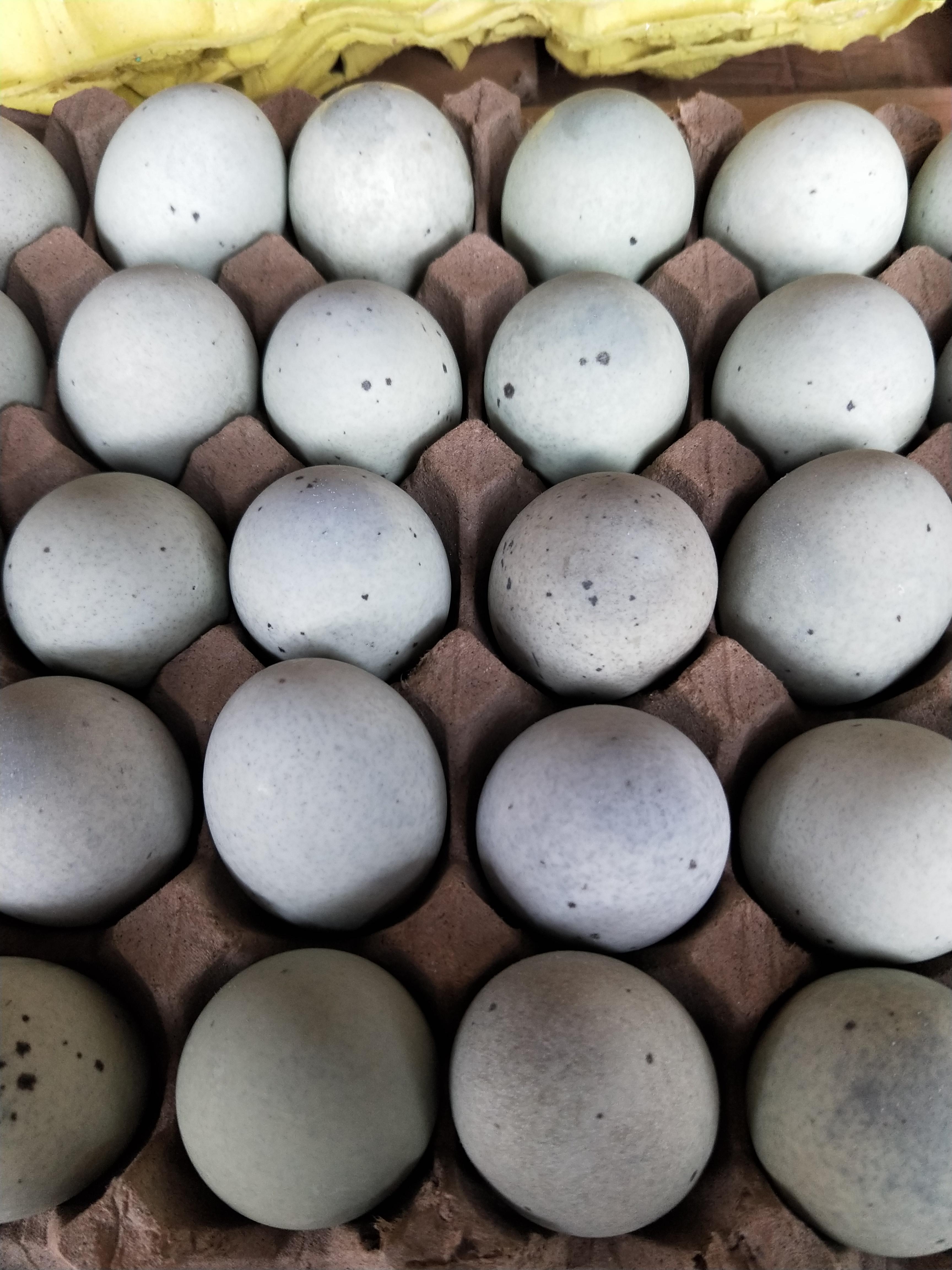 [松花皮蛋批发]松花皮蛋 价格1.25元/个