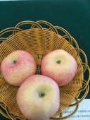 紅富士蘋果  70mm以上 日曬面 膜袋 8斤