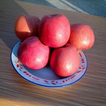 紅富士蘋果靈寶紅富士蘋果膜袋/紙加膜75以上