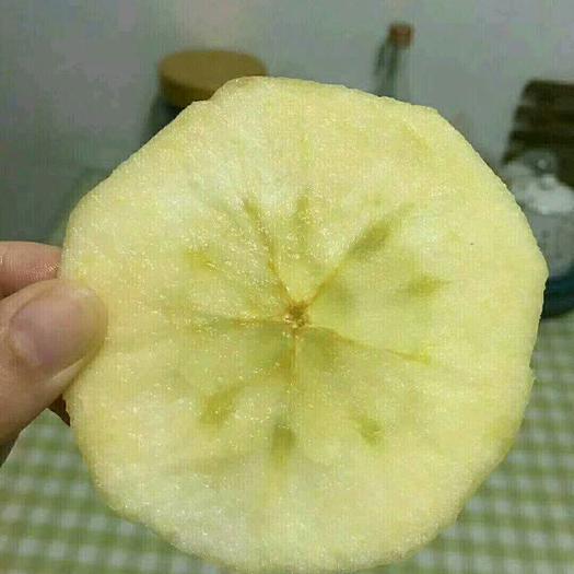 河南省商丘市虞城縣紅富士蘋果 膜袋 片紅 80mm以上