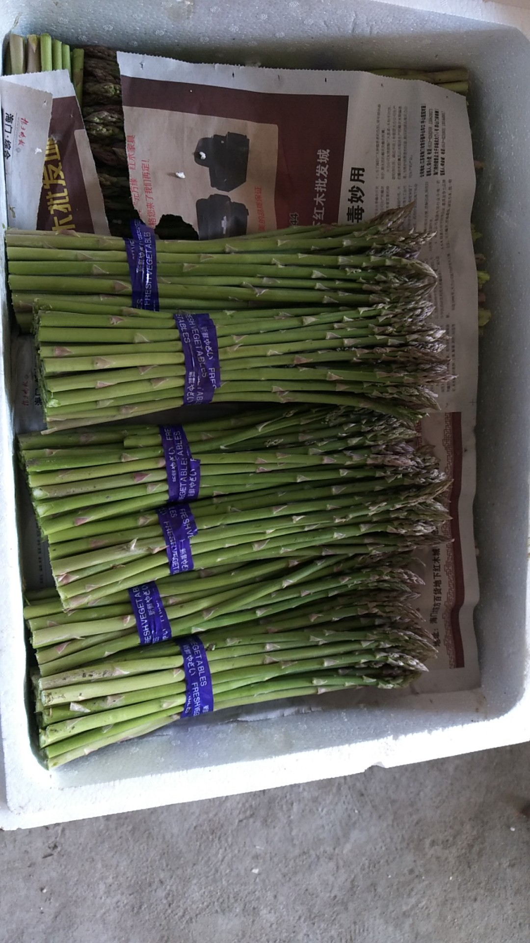 [绿芦笋批发]绿芦笋 混装通货价格3.66元/斤