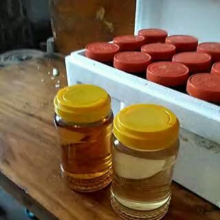 枣花蜜 塑料瓶装 98% 2年以上