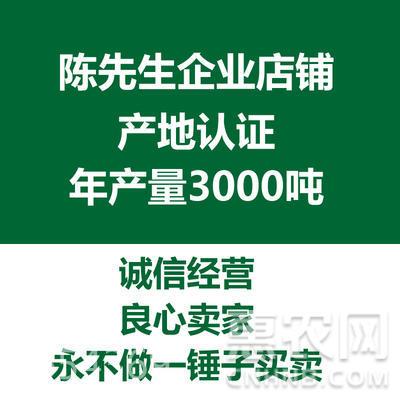 寧夏枸杞 特優級 1斤袋裝大中小果批發