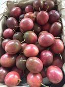 紫色百香果 50 - 60克