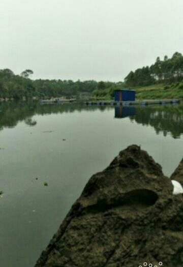 广西壮族自治区来宾市兴宾区网箱草鱼 人工养殖 1-2.5公斤