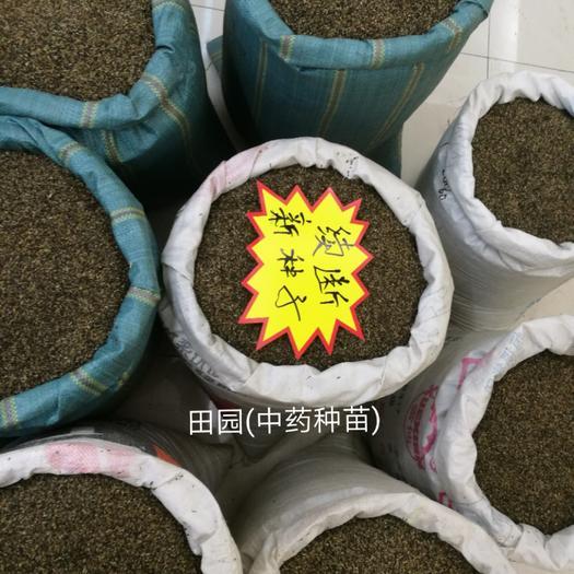 云南省昆明市西山区续断