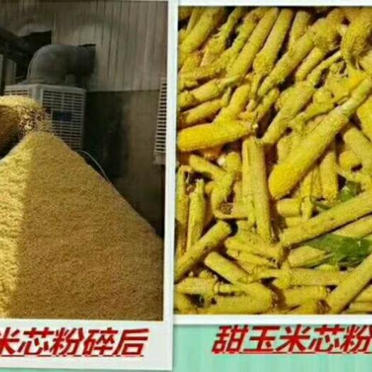 天津市寶坻區玉米芯 飼用鮮