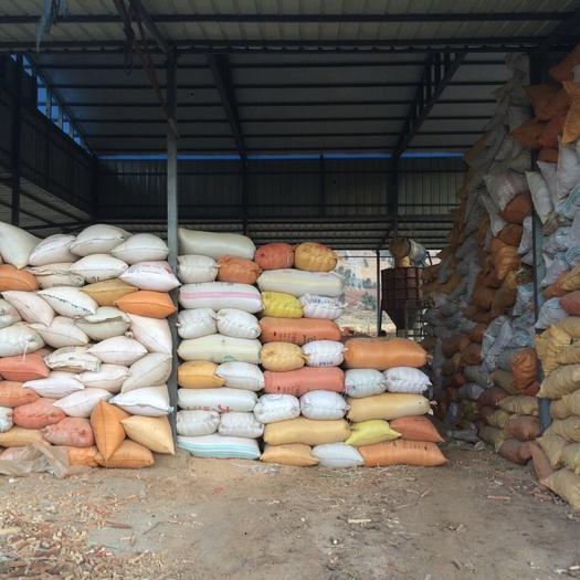 云南省大理白族自治州鶴慶縣玉米芯 支持退伍老兵創業