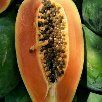 瓜类专用叶面肥