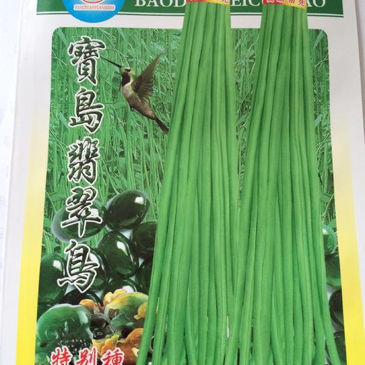 河南省郑州市金水区 高档翠绿色豆角种子,春秋可以种,产量高,结荚密厂家直销