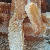 海南深山原生態中蜂蜜