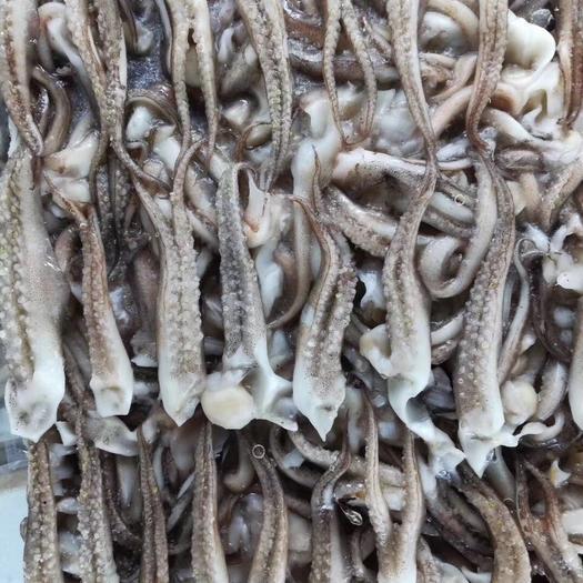 廣東省深圳市寶安區 阿根廷魷魚須二本足冷凍品16斤/件整件出貨