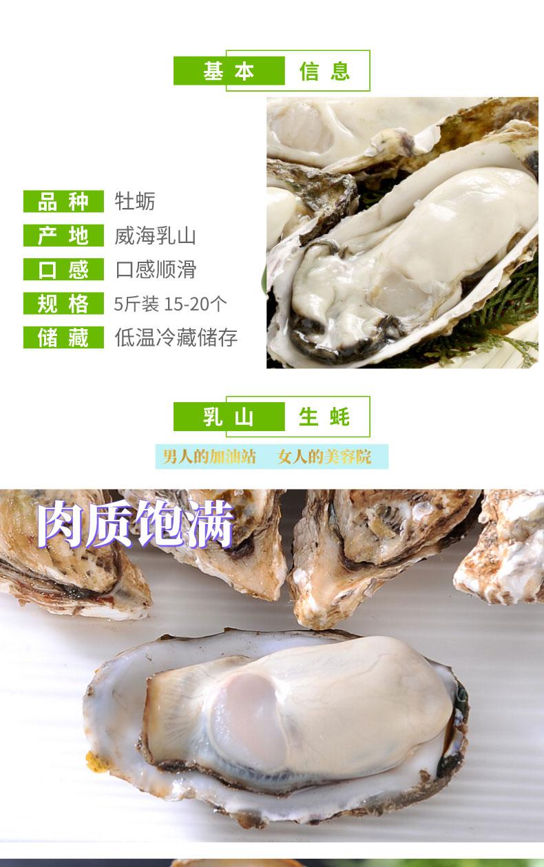 山東乳山生蠔牡蠣海蠣子海鮮水產鮮活新鮮一箱五斤包郵
